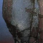 Oljemaleri fra Rolf Nerli